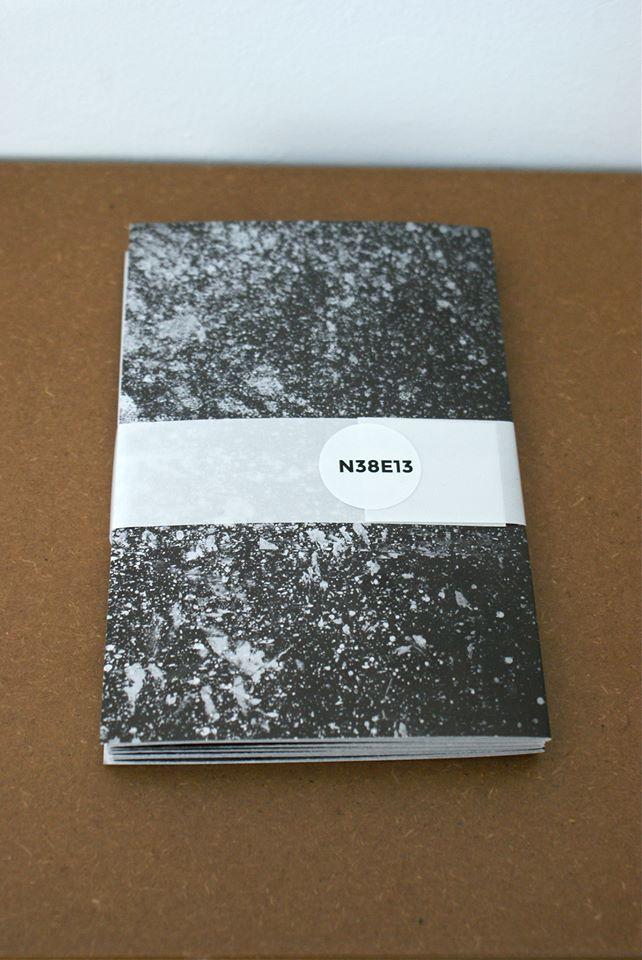 N38E13 libro d'artista