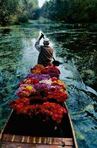 STEVE McCURRY, Flower seller, Dar Lake, Srinagar, Kashmir, 1996