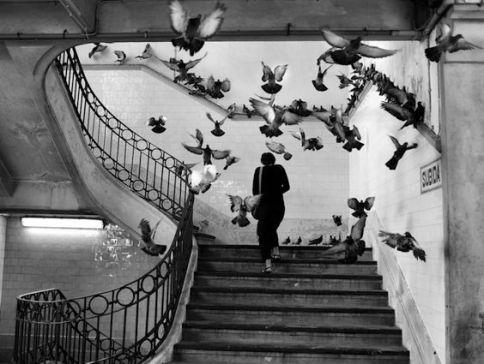 H.Cartier Bresson Mercado do Bolh∆o, Porto