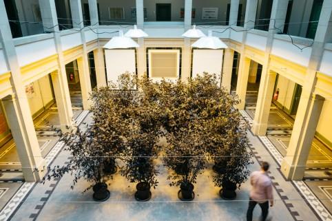 Parcours Galleria_Franco_Noero__David_Kordansky_Gallery__-2